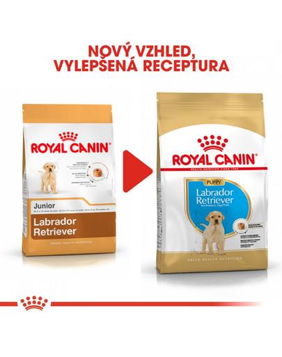 ROYAL CANIN Labrador Puppy 12 kg  granule pro štěně labradora