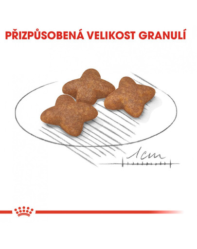 ROYAL CANIN Mini adult 4 kg granule pro dospělé malé psy