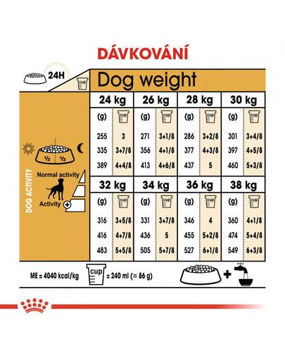 ROYAL CANIN Boxer Adult 12 kg granule pro dospělého boxera