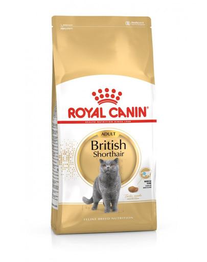 ROYAL CANIN British Shorthair Adult 10kg granule pro britské krátkosrsté kočky