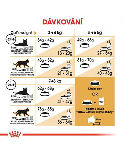 ROYAL CANIN Ragdoll Adult 2kg granule pro ragdoll kočky