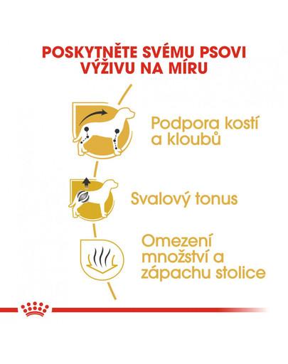 ROYAL CANIN Dachshund Adult 7.5 kg granule pro dospělého jezevčíka