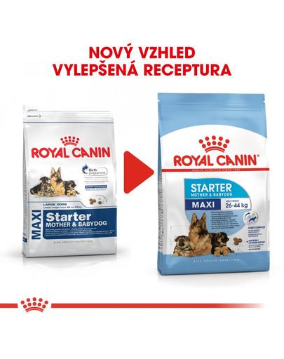 ROYAL CANIN Maxi Starter Mother&Babydog 4 kg granule pro březí nebo kojící feny a štěňata
