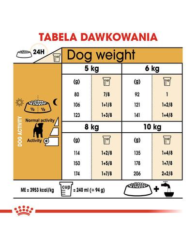 ROYAL CANIN Jack Russell Adult 3 kg granule pro dospělého jack russell teriéra