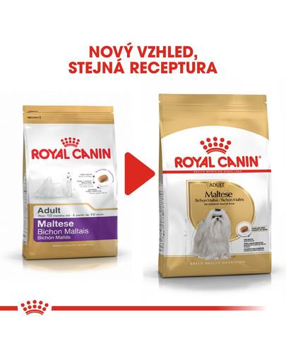 ROYAL CANIN Maltese adult 500g granule pro maltézské psíky