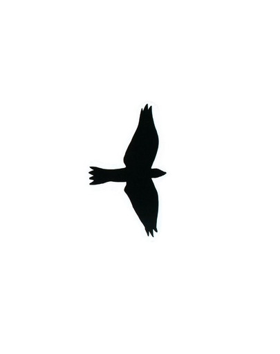 TRIXIE Sada samolepek draví ptáci 3 ks