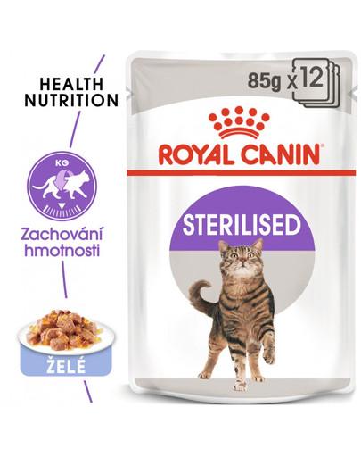 ROYAL CANIN Sterilised Jelly 85 g x 12 ks - kapsička pro kastrované kočky v želé