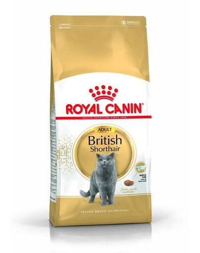 ROYAL CANIN British Shorthair Adult 4kg granule pro britské krátkosrsté kočky