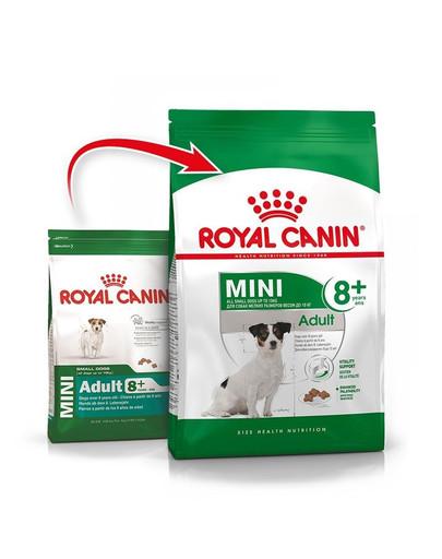 ROYAL CANIN Mini Adult 8+ 4kg granule pro stárnoucí malé psy
