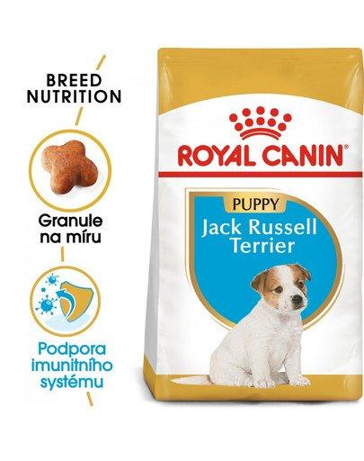 ROYAL CANIN Jack Russell Puppy 3 kg granule pro štěně jack russell teriéra