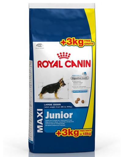ROYAL CANIN Maxi junior 15 kg + 3 kg gratis
