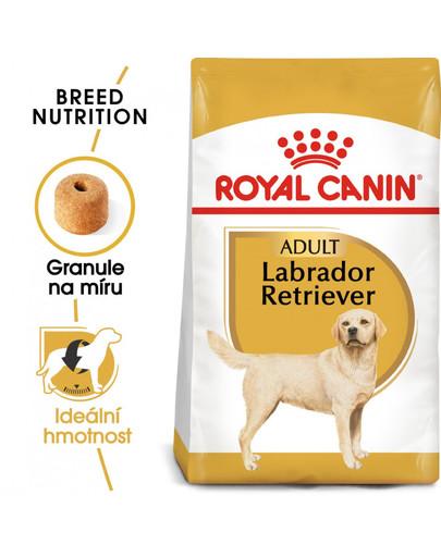 ROYAL CANIN Labrador Adult 3 kg granule pro dospělého labradora