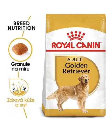 ROYAL CANIN Golden Retriever Adult 3 kg granule pro dospělého zlatého retrívra