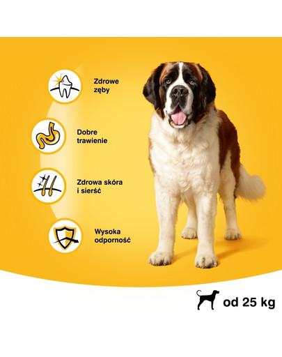 PEDIGREE Dry adult large dog hovězí 15 kg