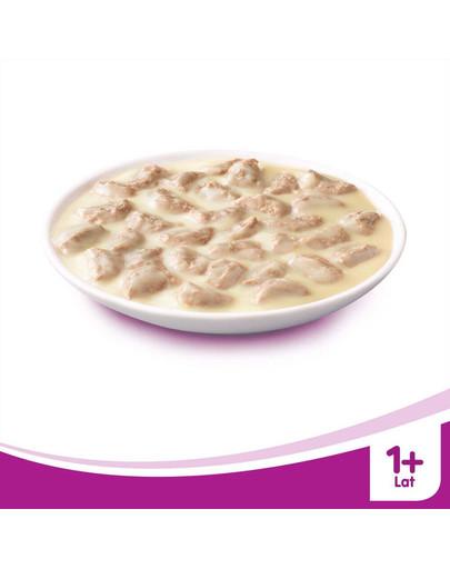 WHISKAS Krémová polévka s hovězím masem 85g x28