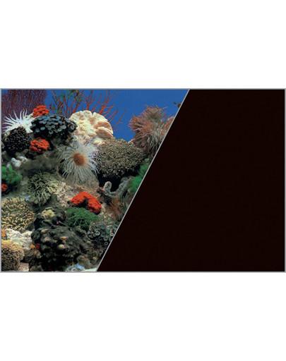 ZOLUX Pozadí do akvária oboustranné 60 cm x 15 m Korálový útes modrý/černý