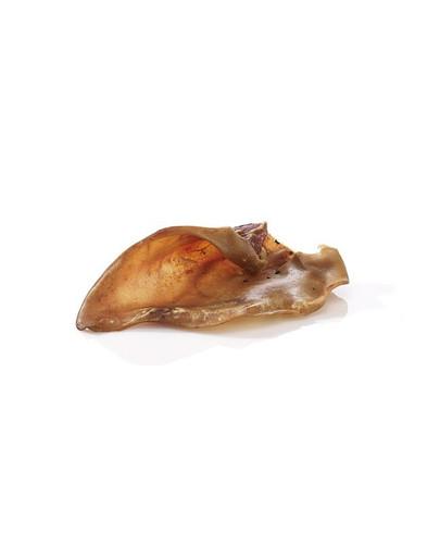 MACED Vepřové ucho velké 10 ks.