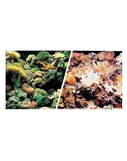 HAGEN Oboustranné pozadí do akvária Útes / korál 45cmx7.5m